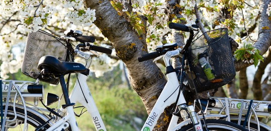 Electric bike hire in Provence