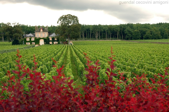 Burgundy is beautiful by bike. Photo: guendal