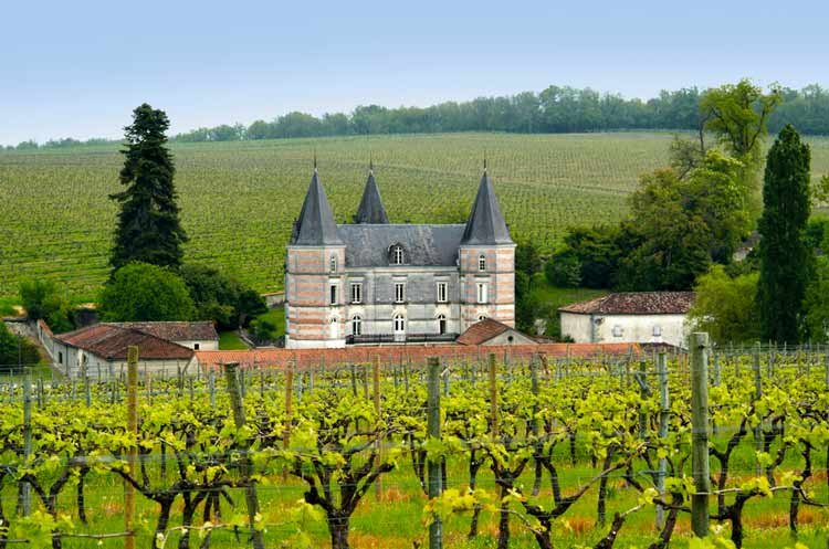 a comparison of burgundy and bordeaux the provinces of france famous for producing wine A history of beer — part 2  for fine wines from the rhineland, burgundy and bordeaux,  fjordman: a history of beer — part 3.
