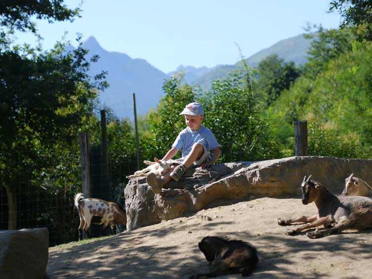 Pyrenees activity holidays - animal park