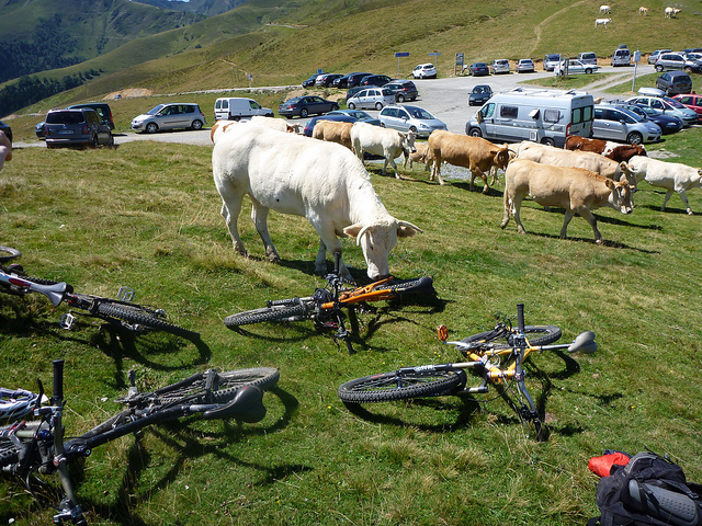 Locals making their Tour de France inspections at the top of Port de Bales. Photo: Simon James