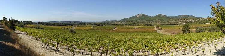 Provence wine route