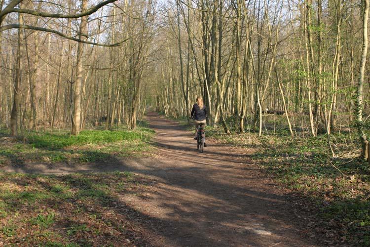 Camping Bois De Vincennes - Cycling in the Bois de Vincennes in Paris Freewheeling France